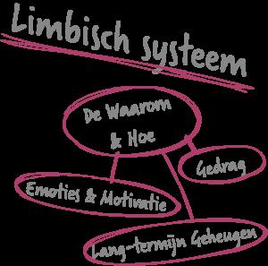 Lymbicsystem